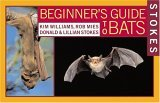 Beginner's Guide to Bats